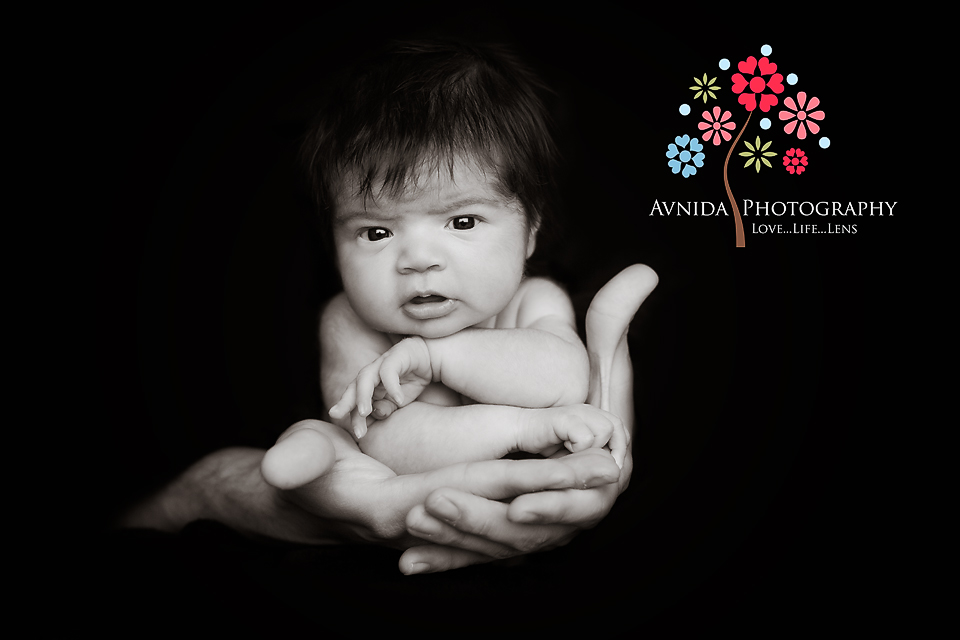 newborn photographer dallas tx