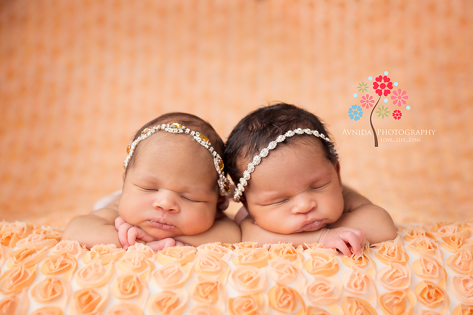 Newborn twins photographer westfield new jersey ava zoe