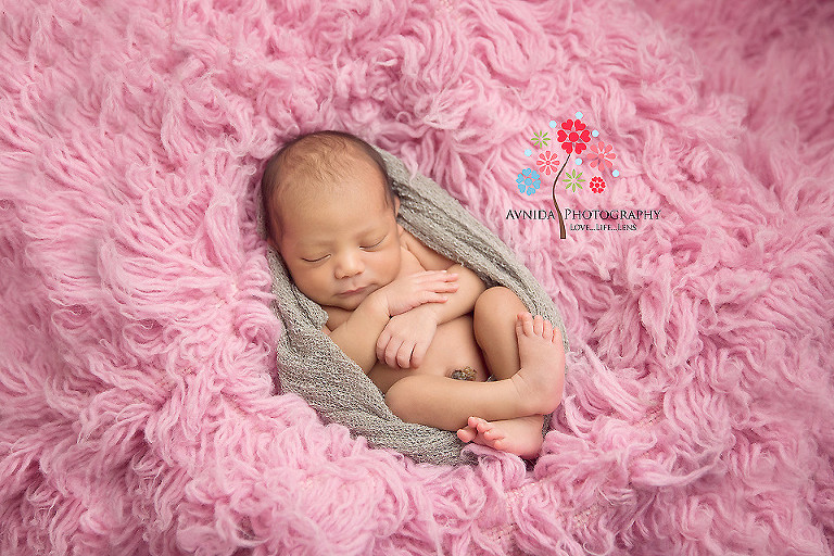 Newborn Photography Ocean County Nj