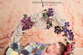 Branchburg Newborn Photography Hillsborough NJ-princess sleeps