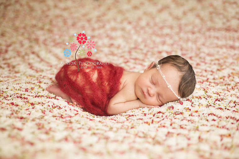 Newborn Photography New Providence NJ - lying on bed of roses