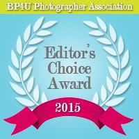 Award for NJ Newborn Photographer - Avnida Photography
