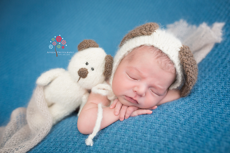 Newborn photography englewood cliffs nj you might be sleeping when your cute soft friends who