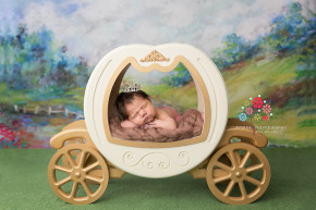 Newborn Photography Paterson NJ - Believe it or not this is how we started - The little princess goes out for a ride in her princess carriage - the grass is green, the spring flowers are blooming and the sky is clear today - perfect day to be outside